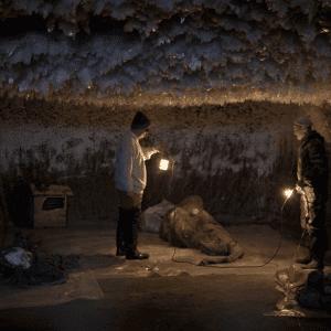 Monsieur Pak dans la grotte avec le mammouth Yuka